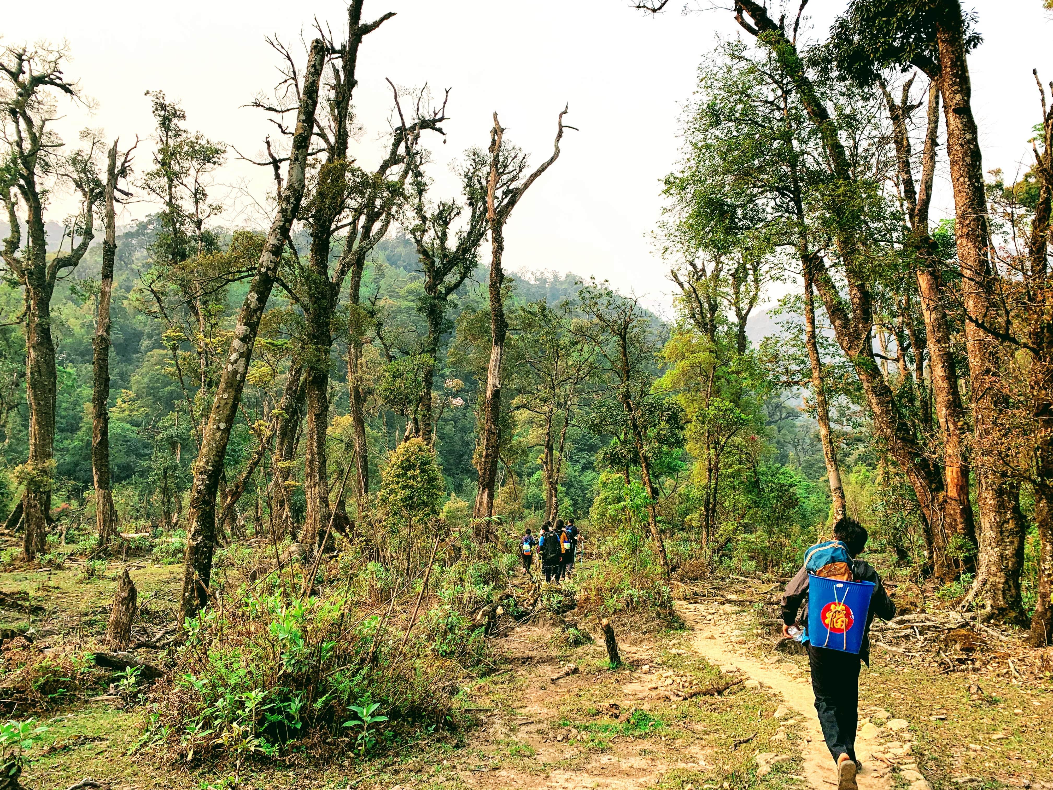 Bạn đã thử trekking chưa?